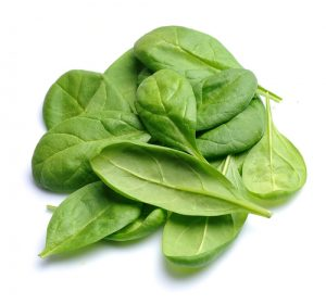 Spinach,Leaves,Close,Up,Isolated,On,White.