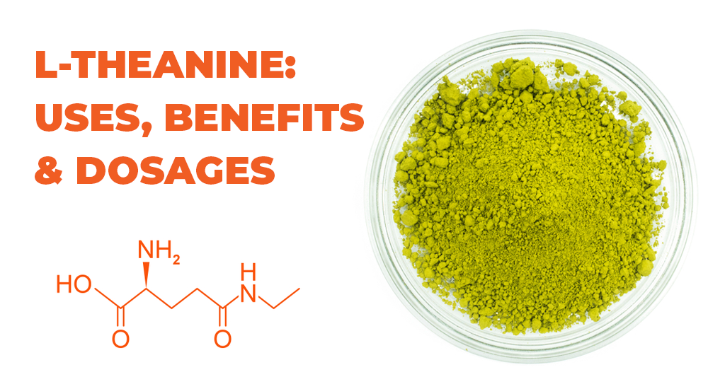 l theanine benefits uses dosages